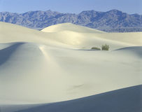White Sand dunes, Death Valley National Park, CA Royalty Free Stock Photography