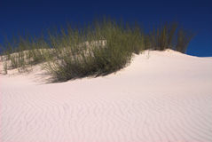 White sand dunes in desert Royalty Free Stock Images