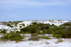 White Sand Dunes II Stock Photography