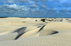 White sand dunes of Nilgen Nature Reserve Stock Photo