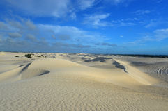White sand dunes of Nilgen Nature Reserve Stock Photos