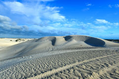 White sand dunes of Nilgen Nature Reserve Stock Images