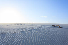 White sand dunes panorama from Lencois Maranhenses National Park Stock Photos