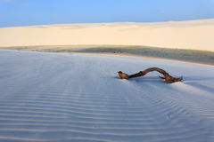 White sand dunes panorama from Lencois Maranhenses National Park. Brazil. Rainwater lagoon. Brazilian landscape Stock Photos
