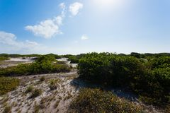 White sand dunes panorama from Lencois Maranhenses National Park. Brazil. Rainwater lagoon. Brazilian landscape Royalty Free Stock Photos