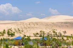 White Sand Dunes, Vietnam Stock Photography