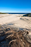 White sand hills stock images
