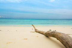 White sand Sea beach Stock Photos