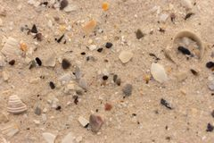 White sand with shell fragments background. Sand texture closeup. Seacoast concept. royalty free stock images