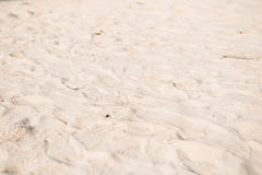 White sand texture on the beach Stock Photo