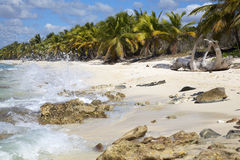 White sand tropical beach and blue sea Royalty Free Stock Photo