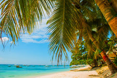 The white sand tropical beach of Panglao Island, Bohol. Philippines Stock Photo