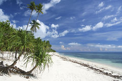 White sand tropical beach philippines Royalty Free Stock Image