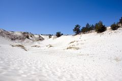 White Sand Valley. White sandy valley with trees at top of ridge, blue sky, dunes Royalty Free Stock Images
