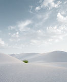 White sand Royalty Free Stock Photography