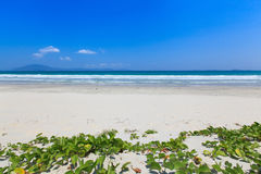 White sand and wave beach blue sky daylight landscape Stock Images