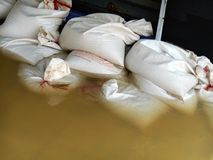 White sandbags for flood defense Stock Photography