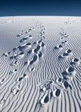 White Sands Stock Image