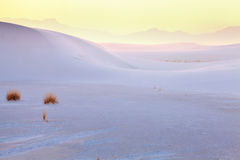 White Sands Royalty Free Stock Images