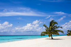 White sands beach at resort, Maldives Stock Image