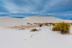 The White Sands Desert Dunes of White Sands Monument National Park Royalty Free Stock Image