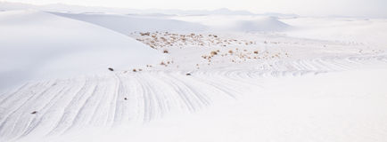 White Sands Desert Panoramic Royalty Free Stock Photography
