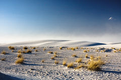 The White Sands Nat. Park. Stock Photos