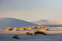 The White Sands Nat. Park. Royalty Free Stock Photos