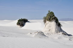White Sands National Monument, New Mexico Royalty Free Stock Photo
