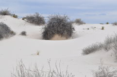 White Sands National Monument, New Mexico Stock Image