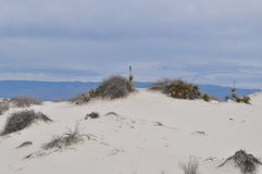 White Sands National Monument, New Mexico Royalty Free Stock Image