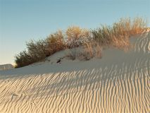 White Sands National Monument Sunset Stock Photography