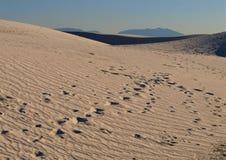 White Sands National Monument Sunset Stock Photo