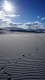 White Sands, New Mexico Royalty Free Stock Images