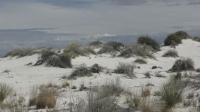 White Sands in New Mexico stock video