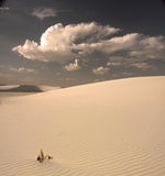 White Sands New Mexico USA Royalty Free Stock Image
