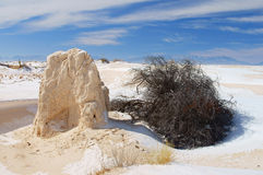 White Sands, NM Royalty Free Stock Image