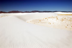 White Sands, NM Royalty Free Stock Photos
