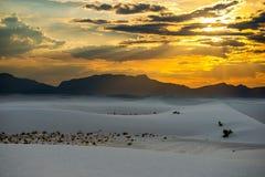 White sands. Sunset at white sands nationa monument Stock Images
