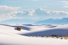 White sands Stock Images