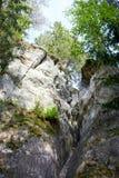 White sandstone outcrops Royalty Free Stock Photos