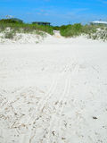 White sandy beach. Scenic view of white sandy beach with blue sky background Royalty Free Stock Photography