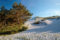 White sandy beach on Bornholm Stock Images