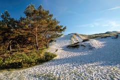 White sandy beach on Bornholm. White sandy beach on the south coast of Dueodde, Bornholm, Denmark stock images