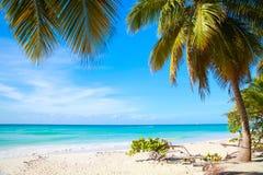 White sandy beach. Caribbean Sea coast Royalty Free Stock Images
