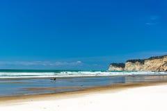 White Sandy Beach in Ecuador Royalty Free Stock Photo