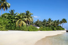 The white sandy beach, Maldives Stock Images