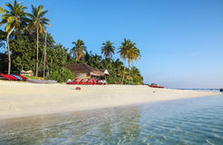 The white sandy beach, Maldives Royalty Free Stock Photography