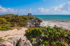 White sandy beach, palm trees, yucca plants and Mayan ruins in the background. Riviera Maya on the Caribbean. Tulum, Yucatan, Mexi royalty free stock photography