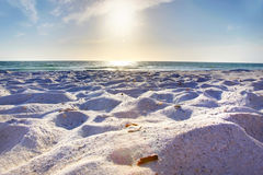 White sandy beach Stock Images